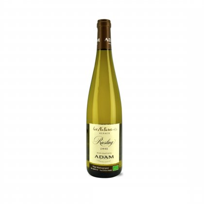 ALSACE RIESLING BIO 2019